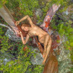 IMG_2980_ffmstudiocom_zhernosek_Crimea_trees_2